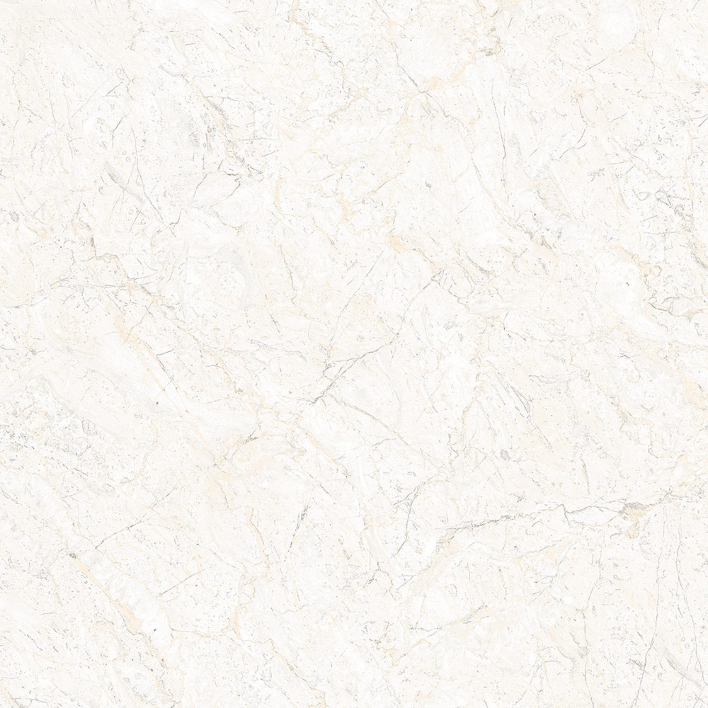 Sugar Finish 718 Ocean Ceramics Pvt Ltd Morbi Gujarat